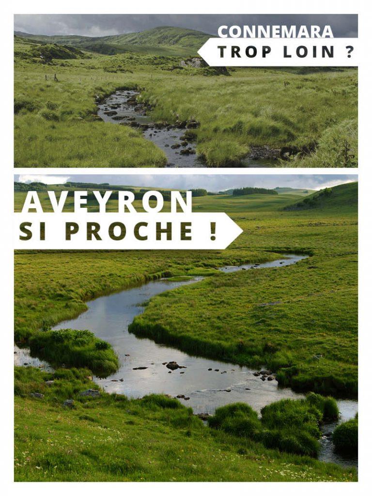 Aubrac en Aveyron